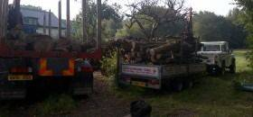 Logs, Kindling and Coal Supplier in Bournemouth and Poole, RTS Logs Dorset